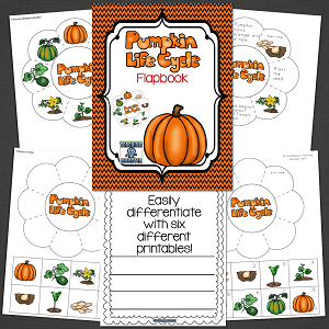Pumpkin Life Cycle graphic organizer for interactive notebooks