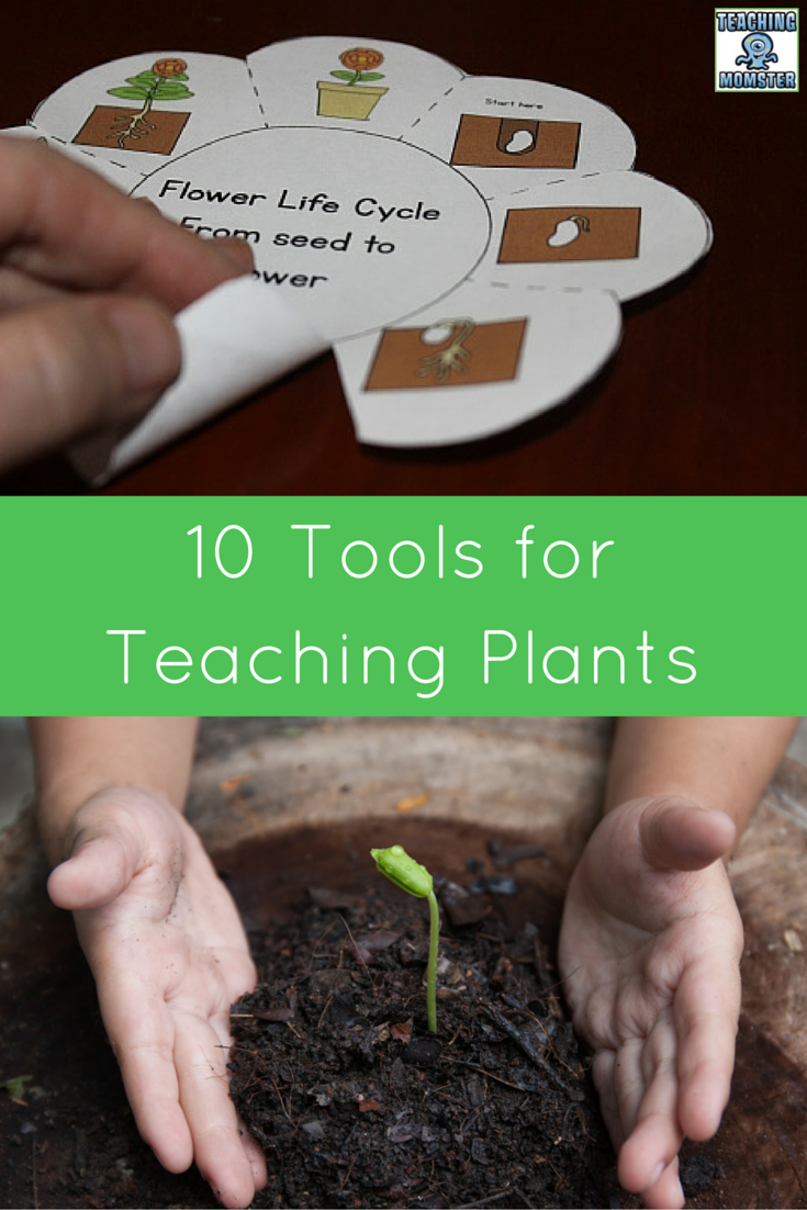 10 Tools for Teaching about Plants
